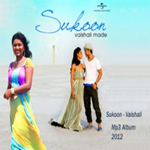Sukoon By Vaishali, Aadesh Shrivastv, Aadesh Mp3 Songs